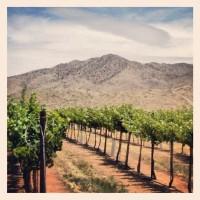 Coronado-Willcox-AZ