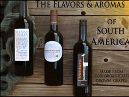 South American Organic Wines - 3 pack